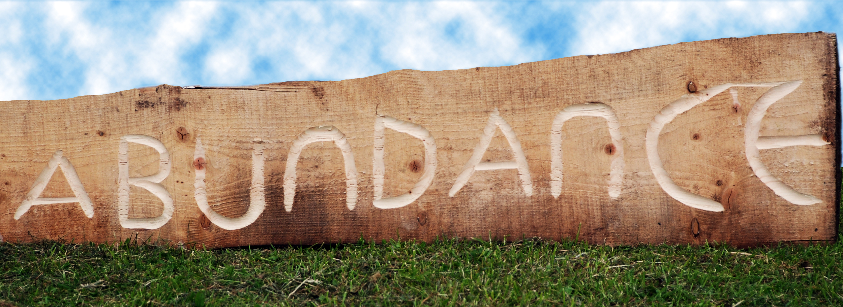 The word abundance carved in a log of wood, outdoors on grass and under a cloudy sky