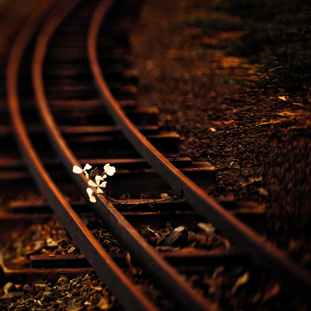 Rail flower